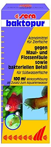sera 02560 baktopur 100 ml - Arzneimittel gegen bakterielle Infektionen bei Zierfischen (z. B. Maul- und Flossenfäule)